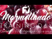 Training day with our customers - grape jam production