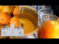 Orange Jam production process with vacuum concentration system